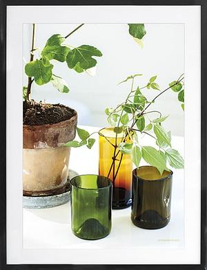 Potteplante 50x70 cm