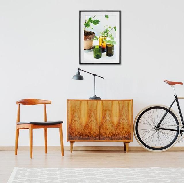 Fotografisk Plakat af Potteplanter der måler 50x70 cm til gangen