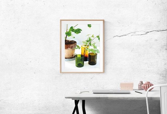 Dekoration af naturplakaten Potteplante 30x40 cm